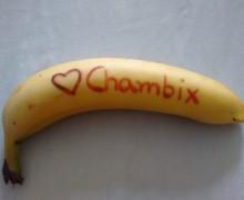 Yo voy a escribir tu mensaje en un plátano por $100 pesos.