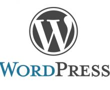 Yo voy a darte un curso Para Principiantes de WordPress