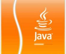 Yo voy a programar en Java basico e Intermedio por 100 pesos.