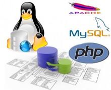 Yo voy a instalar Apache, PHP y MySQL en tu servidor Linux