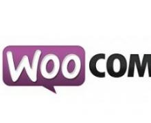 Yo voy a mejorar y programar  tu wordpress o WooCommerce