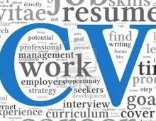 Yo voy a crear tu CV personalizado.
