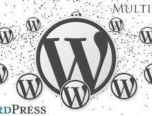 Yo voy a instalar WordPress Multisite Network