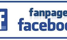 Yo voy a crear 5 posts para tu fanpage Facebook