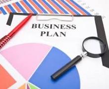Yo voy a leer tu plan de negocios y ofrecer ideas