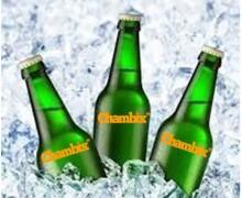 Yo voy a poner su logotipo en una botella de cerveza