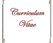 Yo voy a redactar tu Curriculum Vitae en ingles o español