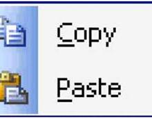 Yo voy a hacer la entrada de datos, investigación, Copy Paste
