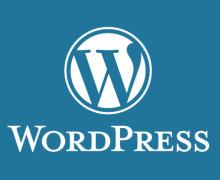 Yo voy a proveer un servicio de instalación de WordPress completo
