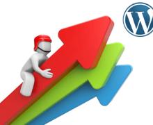 Yo voy a ayudarte a  multiplicar las visitas a tu Web WordPress