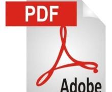 Yo voy a convertir sus archivos a PDF