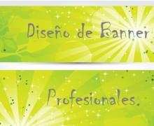 Yo voy a diseñar un Banner profesional para su sitio web