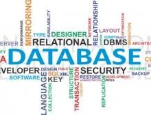 Yo voy a hacer sus proyectos de bases de datos SQL