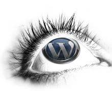 Yo voy a instalar WordPress y algunos plugins populares