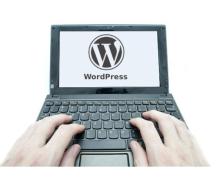 Yo voy a ayudarte con su sitio de WordPress