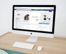 Seré tu estratega digital para tu proyecto